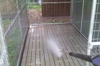 Pressure washing services in Easley SC