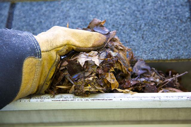 Gutter Cleaning Service In Greenville SC